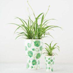 Green Nasturtium Plant Stand Pots