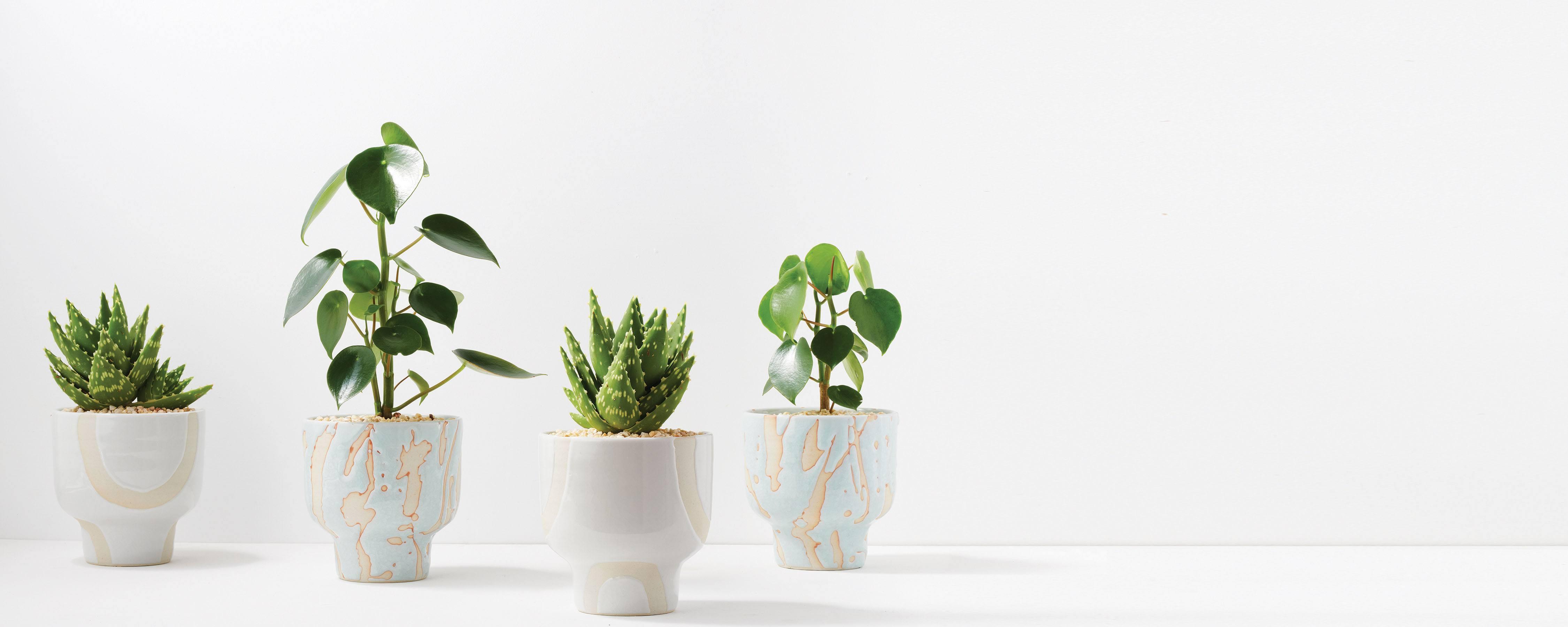 Riverstone Plant Pots