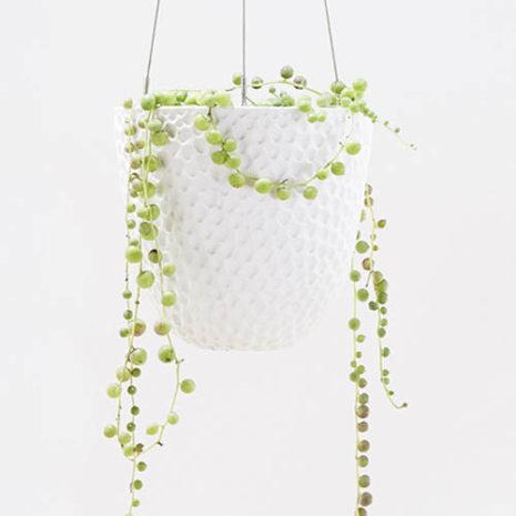 Embossed Hanging Planter