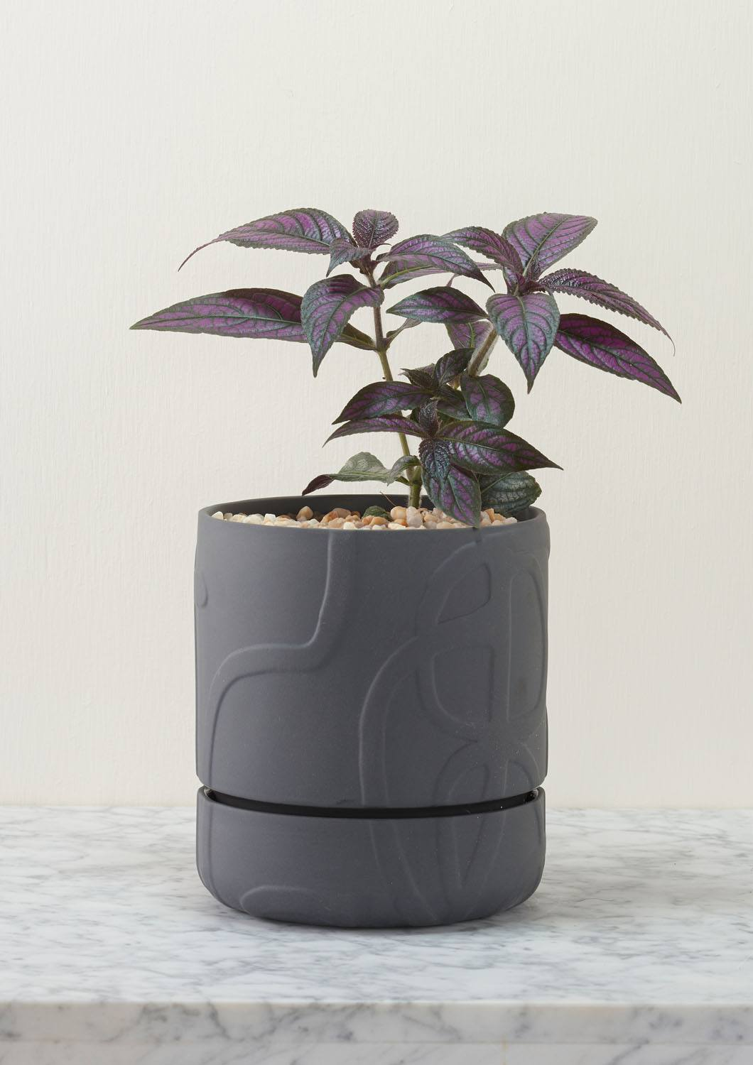 Angus & Celeste Abstract Relief Plant Pot - Brush Line Thick Charcoal Styled