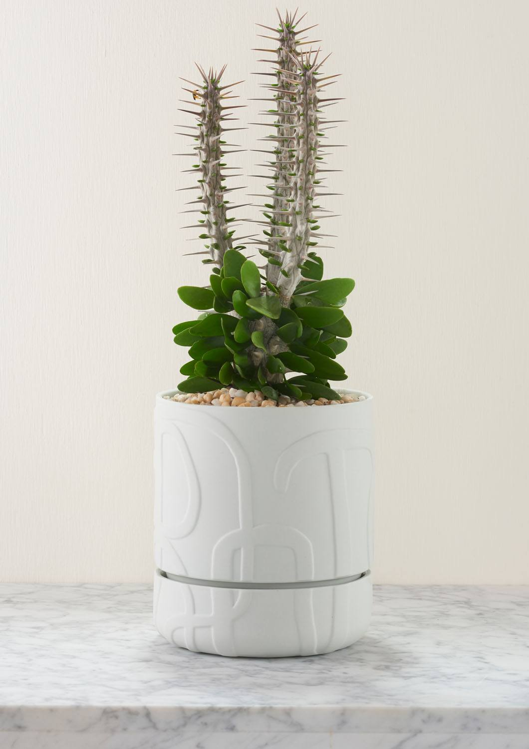 Angus & Celeste Abstract Relief Plant Pot - Brush Line Thick Soft Grey Styled