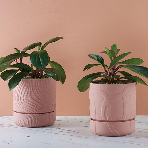 Angus & Celeste Abstract Relief Plant Pots Tile