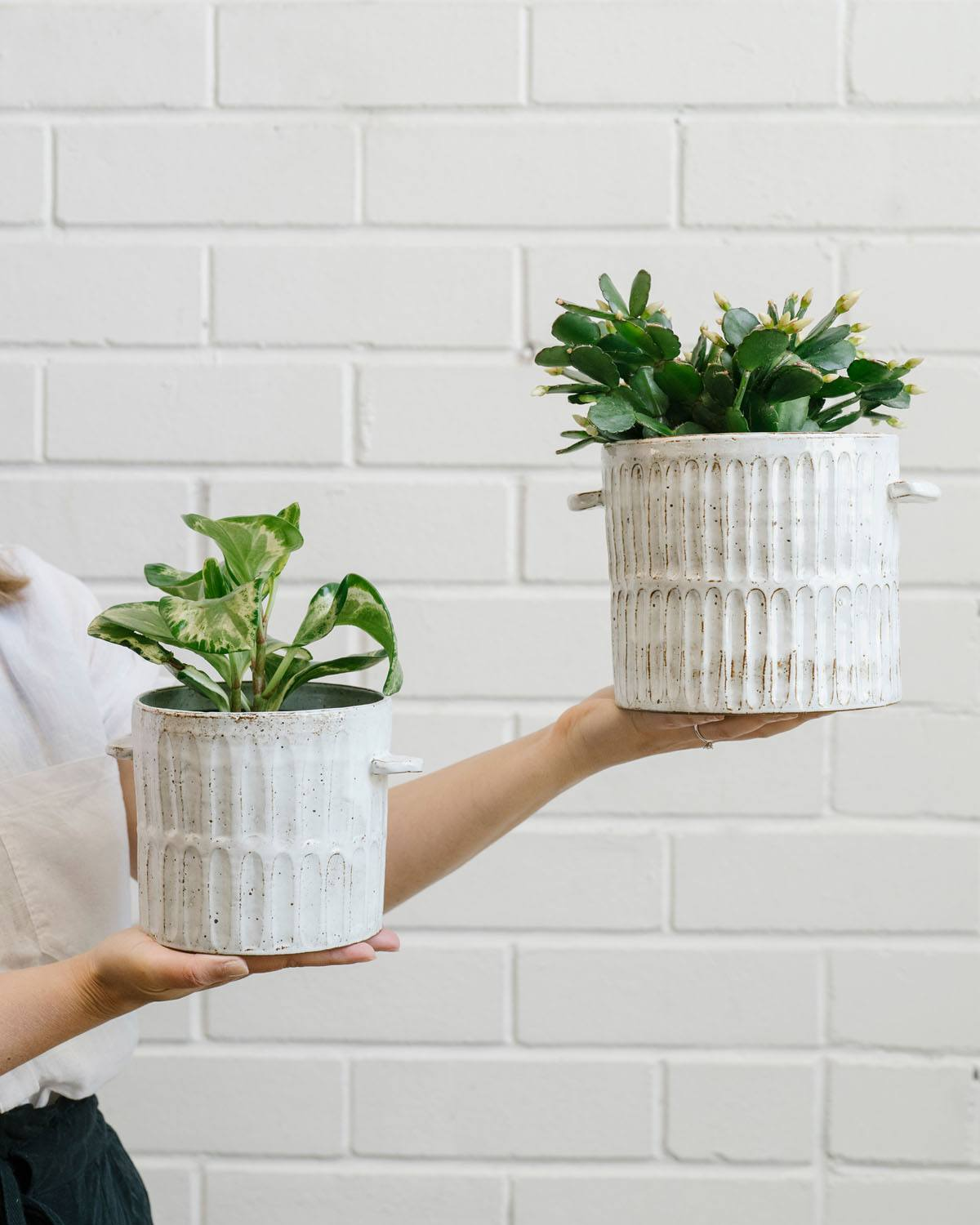 Angus & Celeste Milk Wash Artisan Plant Pot Styled Vertical Lines Set