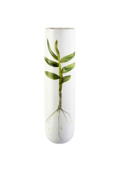 Angus & Celeste Test Tube Wall Vase Root Specimen