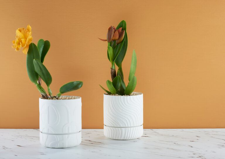 Abstract Relief Plant Pots
